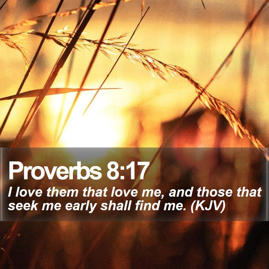 Daily Bible Verse - Proverbs 8:17 | Proverbs 8:17 I love the