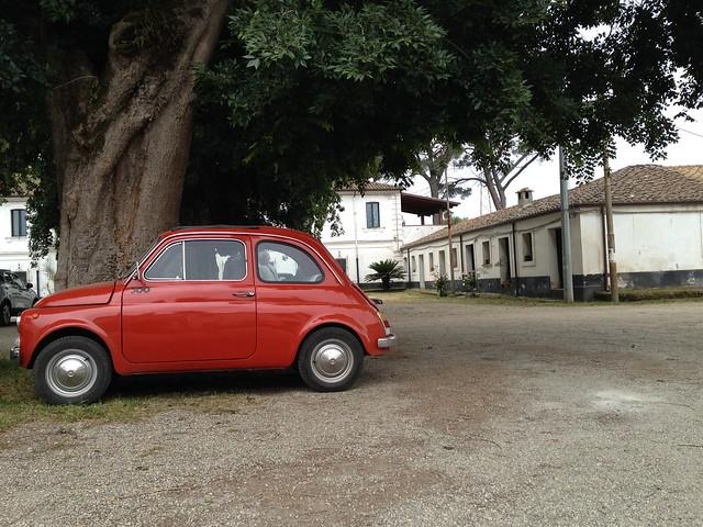 Fiat 500. Cannava