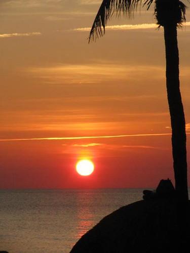 sunrise sol sunnyislesbeach sun florida usa palms palmera contraluz nwn sky himmel cielo backligth vacaciones red amanecer rojo isla isles island