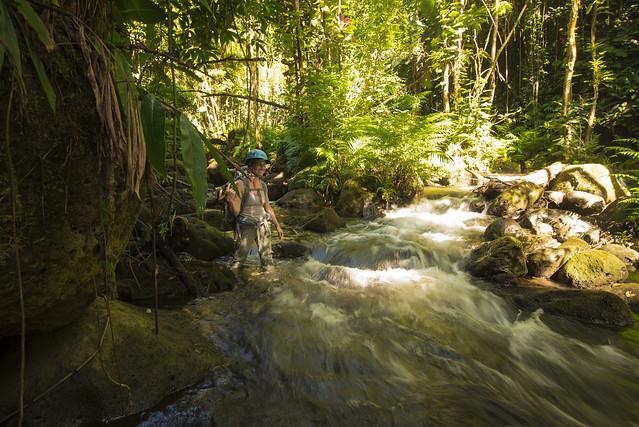 Honomu Creek