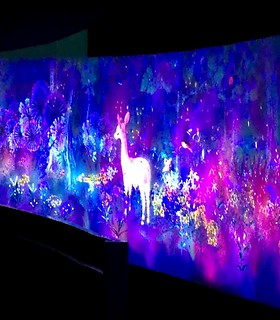 teamLab at National Museum of Singapore: Story of the Forest | by wordingart