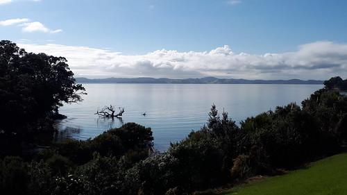 newzealand auckland pohutukawacoast tepuru waihekeisland bay water bush trees sea grass