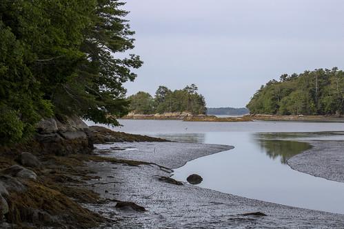 maine shoreline