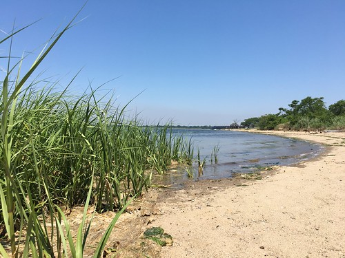 Jamaica Bay: Broad Channel | by NYC Water