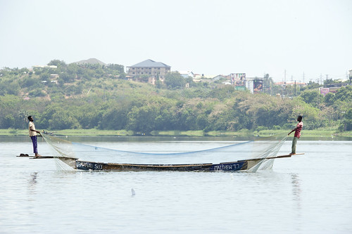 Fishermen drawing their net on the Weija Lake in the Central Region of Ghana