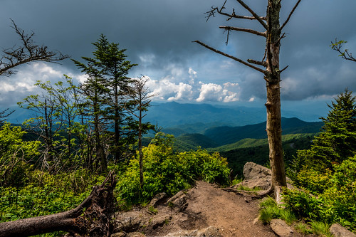 nc northcarolina smokymountains smoky mountains summer june