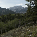 Mt. Hunt from Aspen Ridge