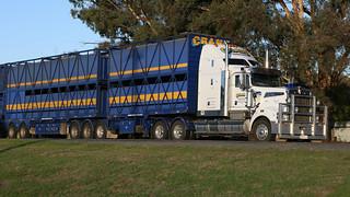 Flickr  The Australian Trucks Pool