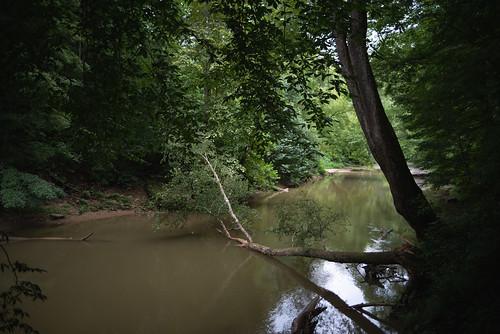 redrivergorge summer danielboonenationalforest wellington kentucky unitedstates us