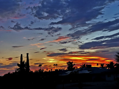 sunset arizona sky clouds silhouette cactus palmtrees color colors blue orange yellow cloud outdoor