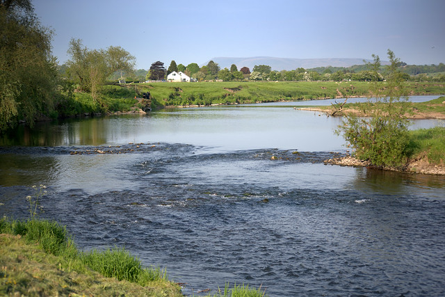 River Ribble at Ribchester - 3