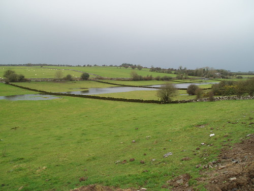 turlough Roscommon. Photo by Micheline Sheehy Skefffington. | by Irish Ramsar Wetlands