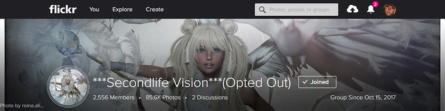 ***Secondlife Vision*** Group Cover