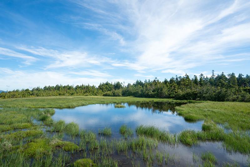 田代山の池塘