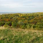 Prächtige Herbstfarben: das waldige Naturschutzgebiet Tippelsberg/Berger Mühle liegt nördlich des Tippelsbergs