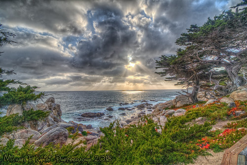 17miledrive pebblebeach california northerncalifornia ocean sunset clouds