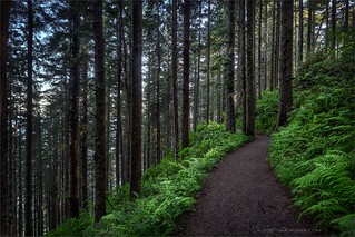 Guardians of the Trail | by TomGrubbe