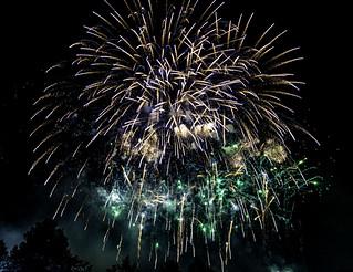 Fireworks 10 | by chris.willis3