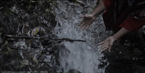 reel cinematografia documental cinematographer colombia david horacio montoya davidhoracio.com 32