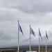 [冰島] 辛格韋爾國家公園