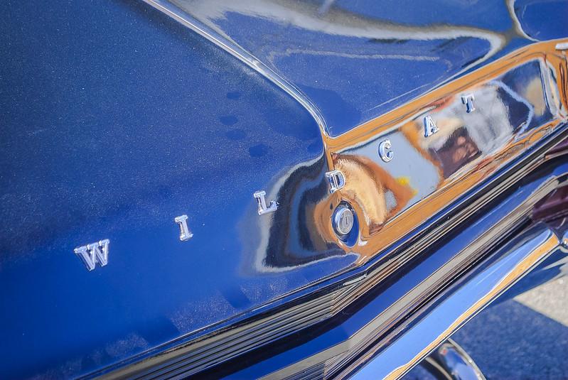Buick Wildcat DSC_9002