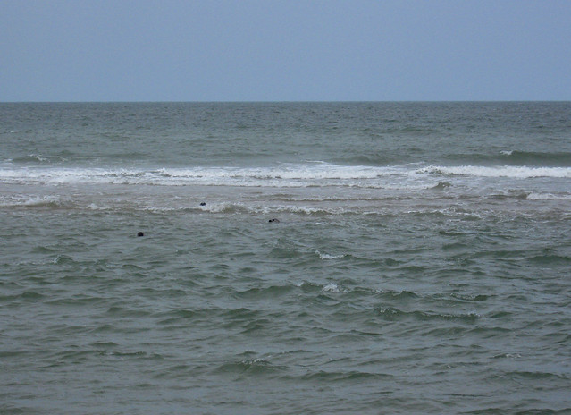 The beach north of Winterton