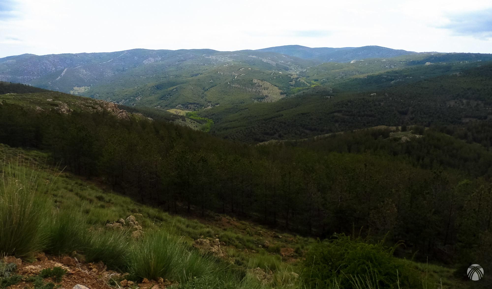 Cabecera del Arroyo Bodurria desde las faldas del Calar de Rapa
