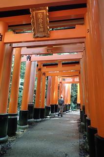 Fushimi inari, Kyoto   by Tartanna