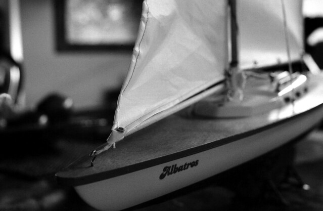 Albatros (2)  (Nikon FE junio 18028)