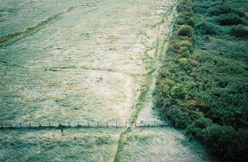 The path we walked, from the M5 motorway bridge | by knautia