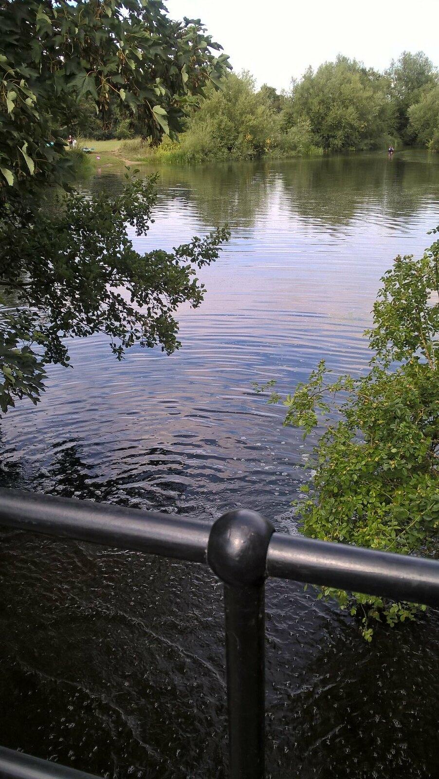 Angling on a pond near Dedham Lock
