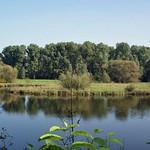 Teich in der Heisinger Ruhraue im Frühherbst