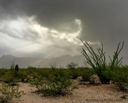 4cornersphoto arizona cactus clouds color crepuscularrays desert landscape monsoon mountains nature northamerica ocotillo outdoor pimacounty rain rural saguaronationalpark scenery sky sonorandesert storm summer thunderstorm unitedstates weather tucson us