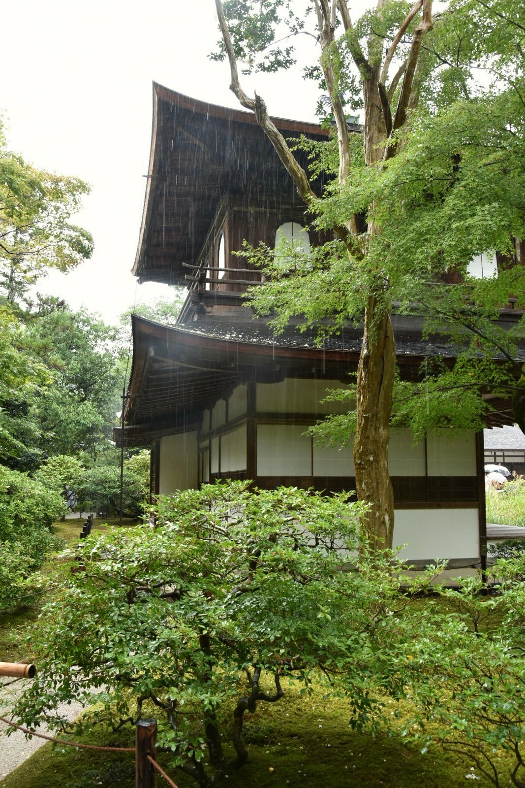 Kyôtô - Ginkaku-ji, le Pavillon d'Argent