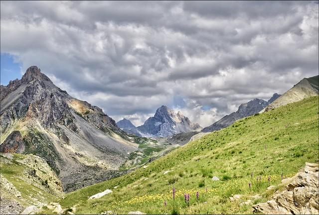 Prairie alpine