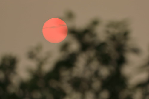 red sun sunset smoke alberta silhouette sky outdoor nature blur outdoors computerwallpaper art light air landscape blurry color desktop orange