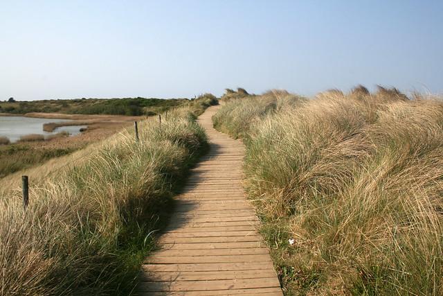 The Norfolk Coast path at Thornham