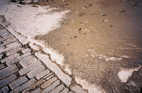 Handprints in the mud | by knautia