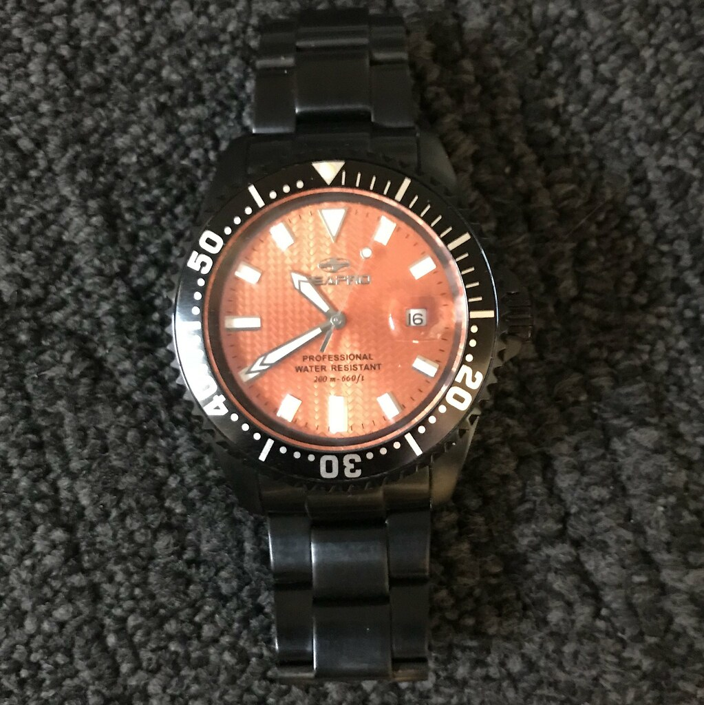 SeaPro Divers Watch