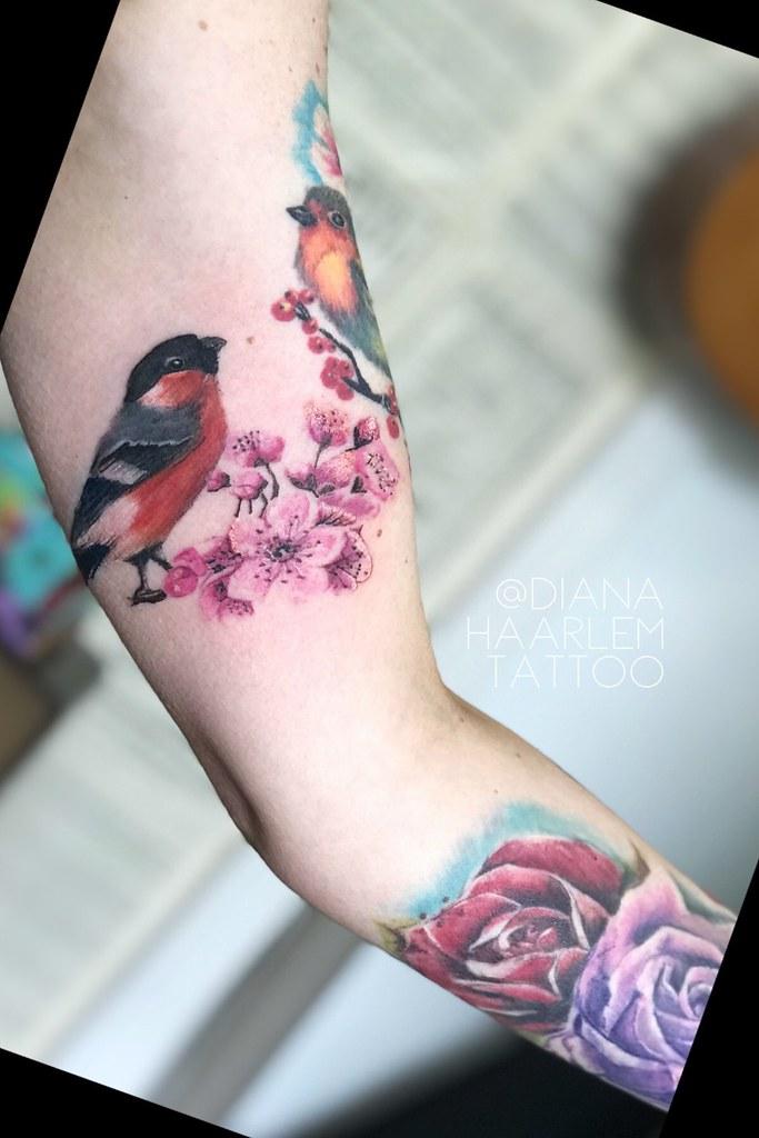 Full Color Birds Tattoo Haarlem Tattoo Flickr