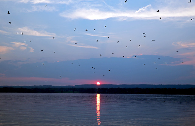 Burlington Bay Sunset