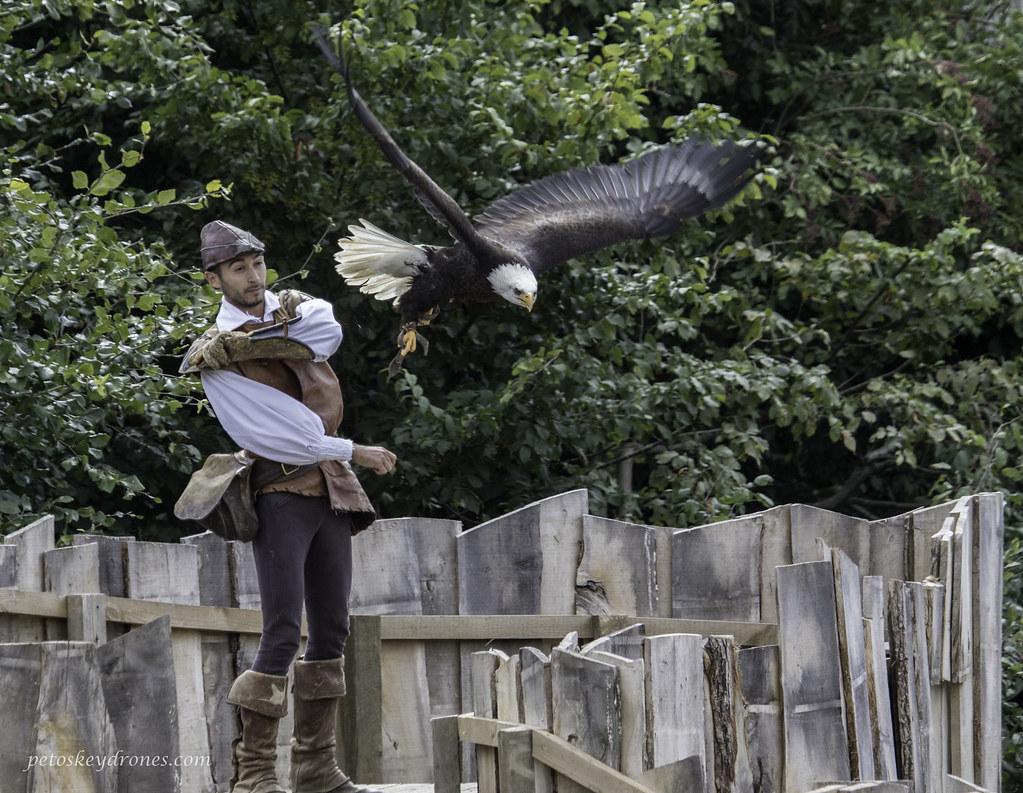 How to throw an eagle