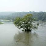 Ruhrhochwasser von der Konrad-Adenauer-Brücke aus gesehen