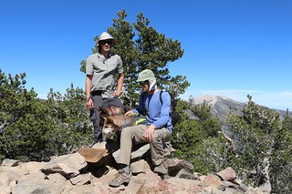 201 Men and Dogs pose on the summit of San Bernardino Peak, with San Gorgonio in the distance | by _JFR_