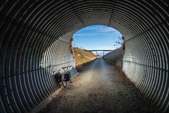 Tunnel on the Rail Trail
