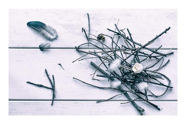 213/365: Broken home