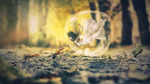 Bubble Ant Dream 4K   by hdwallpaperslife1