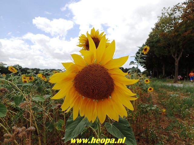 2018-08-10         2e dag          Heuvelland       31 Km  (118)