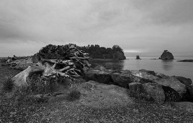 Quileute and Rialto Beach-2