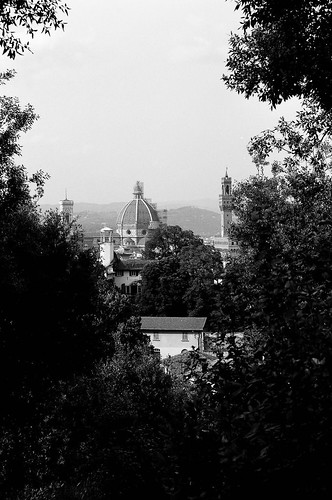 duomo in the trees